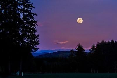 Moon-post