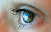 Reflection in an eye of logo from Twitter