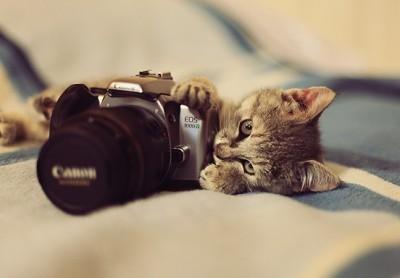 creative-photo