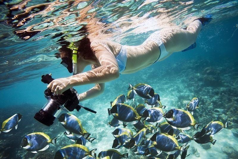 https://hostingkartinok.com/foto/wp-content/uploads/2013/05/underwater-photography.jpg