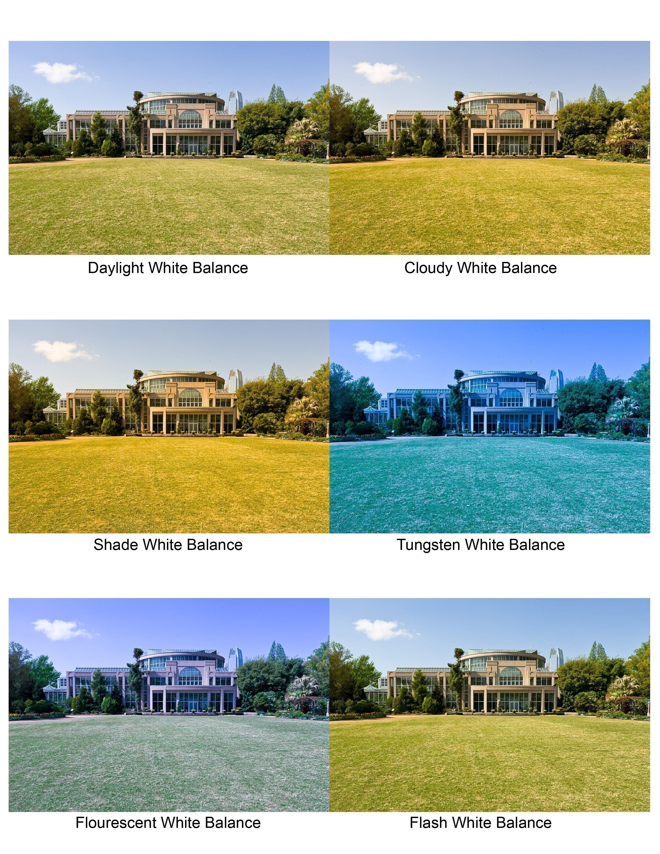 Картинки по запросу как  фотоаппарат видит цвета