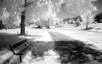 infrared4