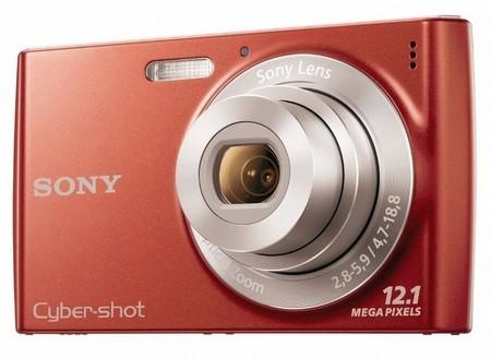 Sony Cyber-shot DSC-W510 – Полная инструкция пользователя | Инструкции для фотоаппаратов, видеокамер и объективов