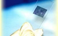 ДНК и РНК микросхемы в борьбе за здоровье