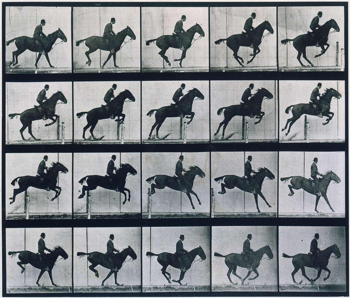 Век движения картинок