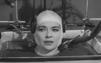 Завещание профессора Доуэля: ученые готовы к пересадке головы
