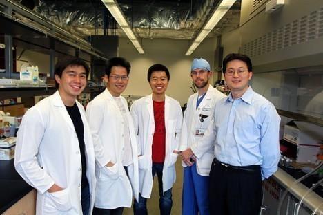 Nanosponges-Soak