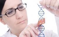 Нанотехнологии 2013 - к чему же они приведут?