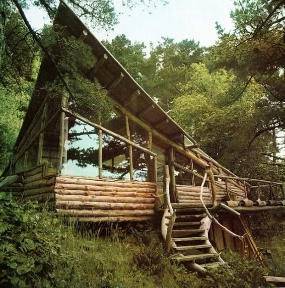 дом-в -лесу1