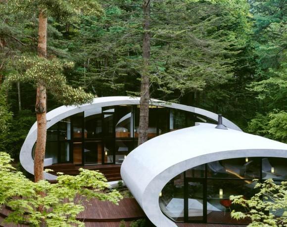 лесной-дом-1