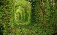 Самые красивые фотографии природы, собранные со всей планеты