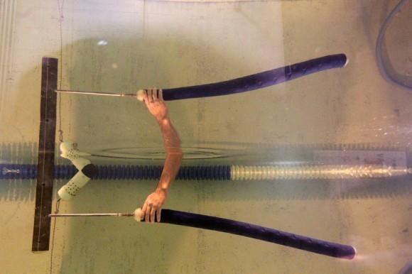 Fishy Robots