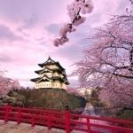 Япония – почти восьмое чудо света