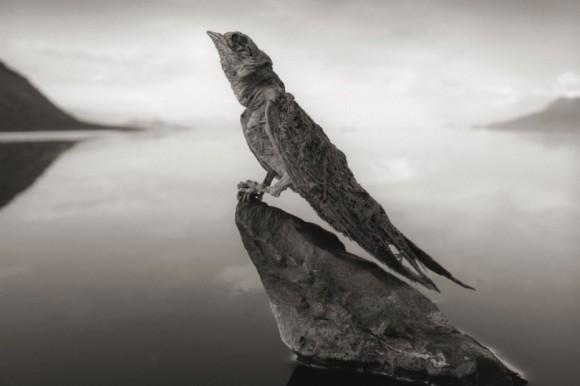 Lake-Natron1