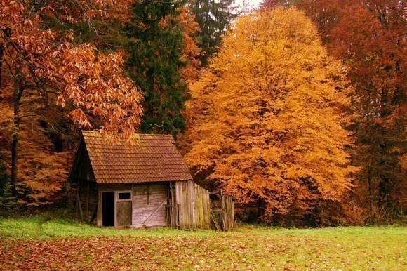 most-beautiful-houses