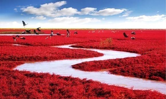 red-beach-panjin