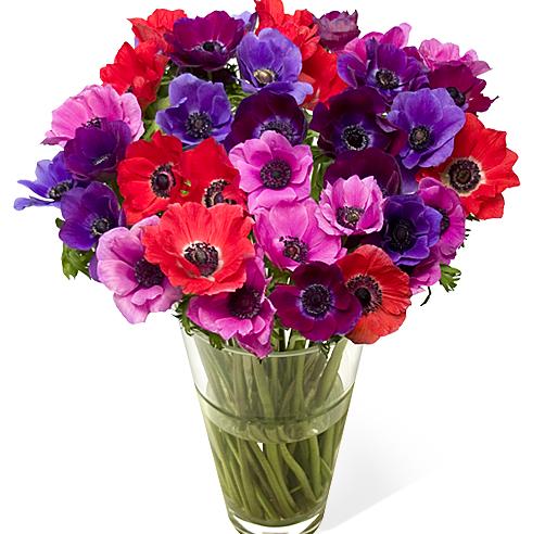 купить-цветы