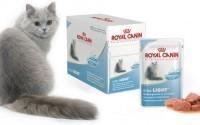 Современные корма для кошек - Роял Канин Уринари
