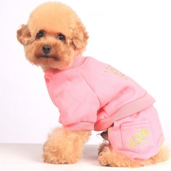 одежда собаки