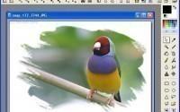 Бесплатный графический редактор для Windows
