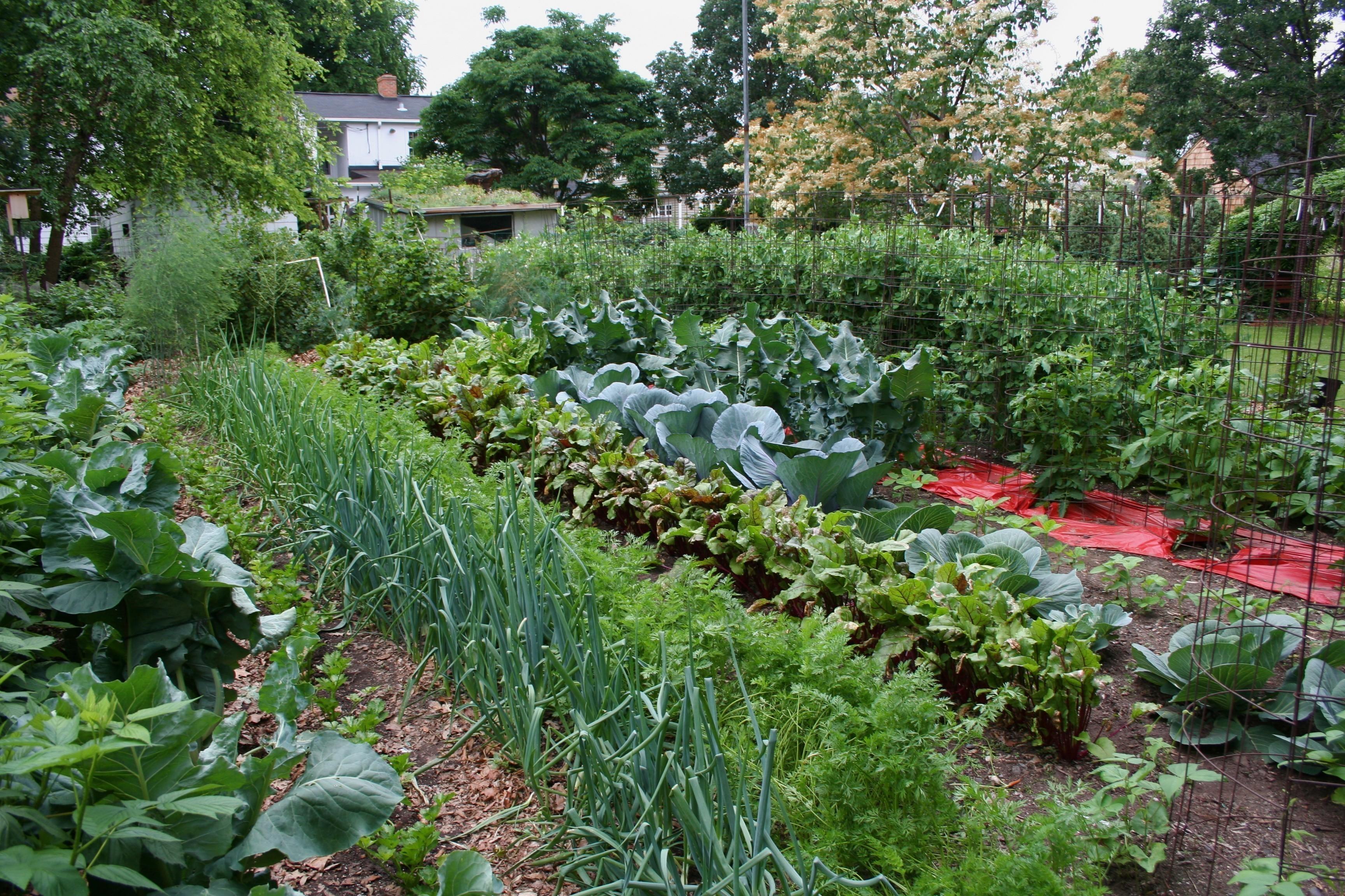 Идеальный огород