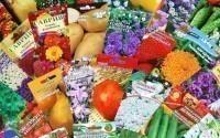 Где купить хорошие семена в москве?