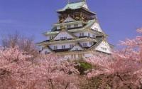 Япония: исчерпывающее руководство для туриста