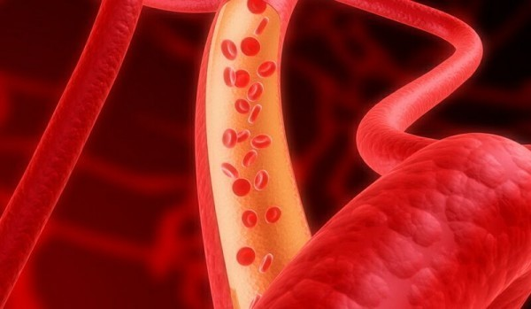 красные кровянные тельца