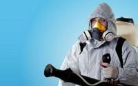 Ультразвуковой отпугиватель или химические средства, что лучше?