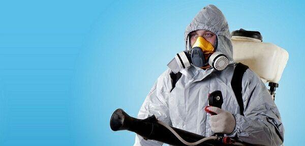 химическая защита от грызунов