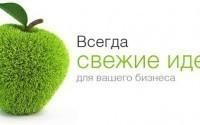 Точка.ru: особенности деятельности компании