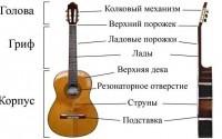 Как научиться играть на гитаре в домашних условиях