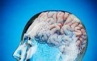 Как повысит уровень IQ?