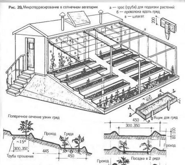 Теплицы вегетарий, - геотермальные технологии на службе закрытого грунта