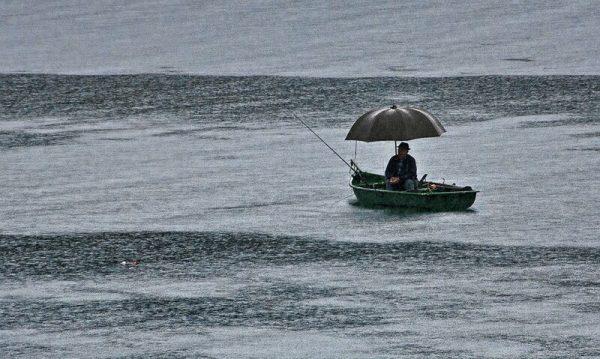 влияние погоды на клев рыбы