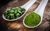 Спирулина: принцип действия и полезные рецепты