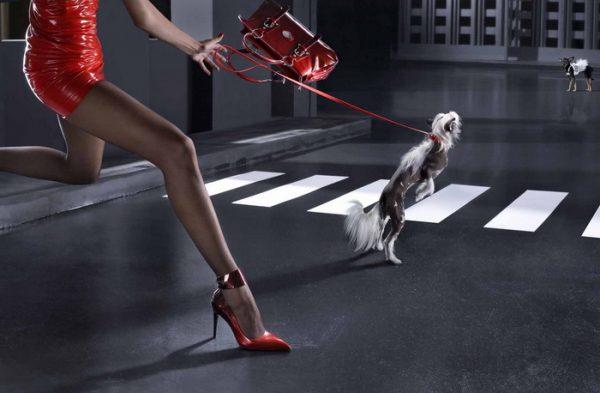 Где купить качественную брендовую обувь из Италии?