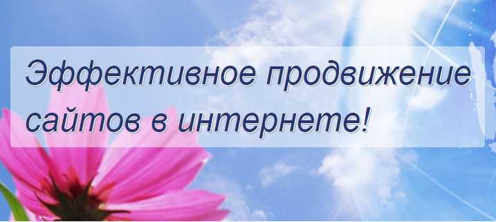 Holostenko & Partners — услуги по раскрутке сайтов