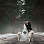 Вопросы, которые молодожены должны задать свадебному фотографу