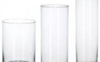 Стеклянные прозрачные колбы – для чего они применяются во флористике?