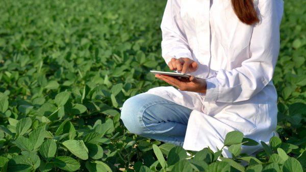 Как стать агрономом