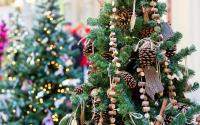 Выбираем елку на Новый Год