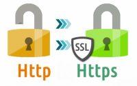 Как правильно выбрать SSL-сертификат