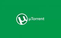 Обзор программы Торрент