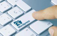 В чем разница шаблона и темы WordPress