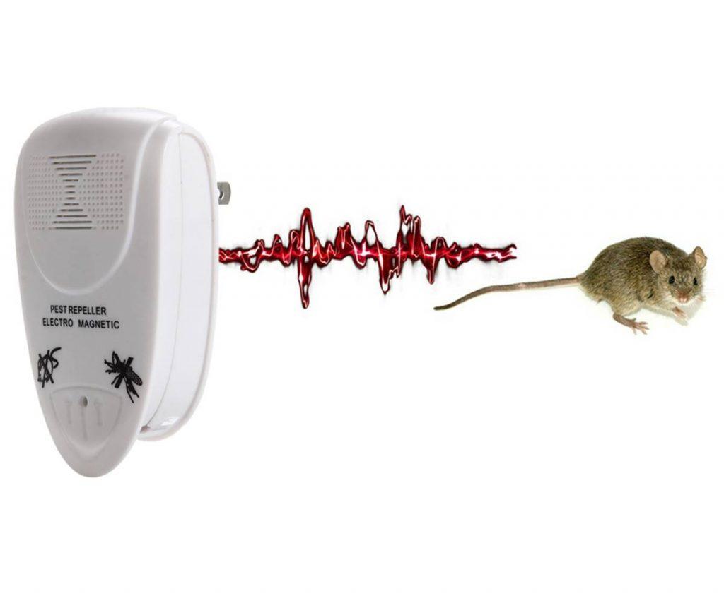 Разновидности современных отпугивателей для животных и насекомых