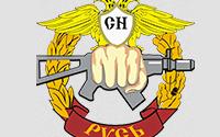 Холдинг структур безопасности Русь