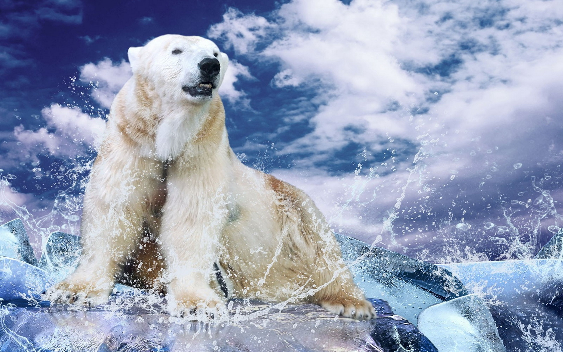 Белые медведи на льдинке скачать