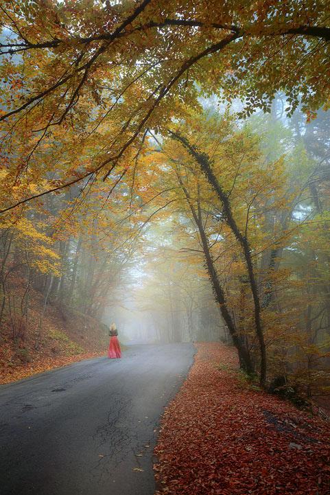 http://hostingkartinok.com/uploads/images/2011/12/9bca6f34208730d31fc494f27395f792.jpg