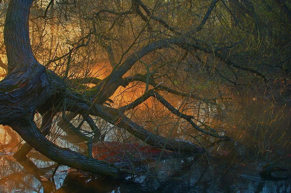 http://hostingkartinok.com/uploads/images/2011/12/ac5fd9017b6badf0233b4698c95f59fc.jpg